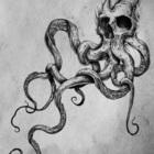 Хроматик Октопус