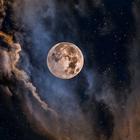 Morena Luna