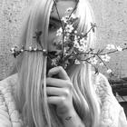 Camila Lutz