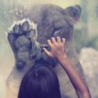 Löwenkind ❤