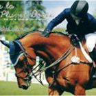Lucile Horses