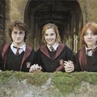 Lola Potter