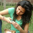 Sara Camasho Castillo