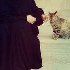 Rinna Zariqi