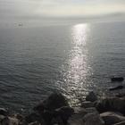 alessia_marini