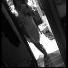 Sofia Yepes