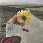daisy ali