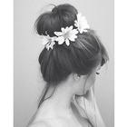 Цвети Лозанова