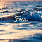 ~Free~♥