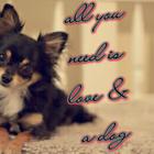 ♥fluffy_heart♥
