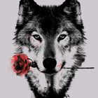 WolfSoul