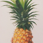 Limonadum