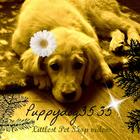 puppydog3535™