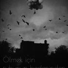 Ceren Bayram