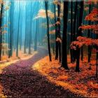 Tiesaa Autumn
