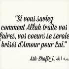 #Marocaiine