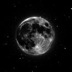 Gecenin Tek Yıldızı