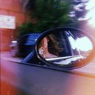 Rohesia__