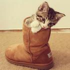 Catgirl3