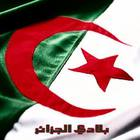 جزائري بقلب فلسطيني
