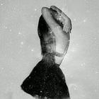 Meli Escamilla