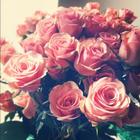 Gabriela_Sweet