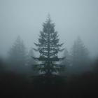 V_darkness
