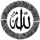 ⋆иαzιмα вιит мυнαммє∂ ѕυℓтαи⋆