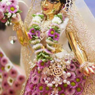 Radhapriya