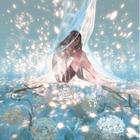 lilia.lys