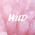 alona love pink