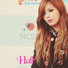 Too Much KPOP♥