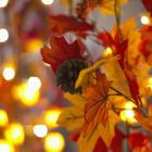 가을 요정