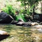 malikmalak2002