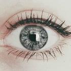 La chica de los ojos grises