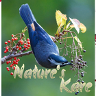 Nature's Kare
