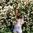 Lee_Rose