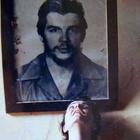 Nour Elshehry