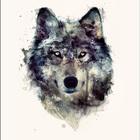 alexia14wolf