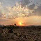 Tahsin Abdulla