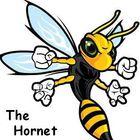 Lacrima Hornet