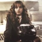 hermionestimeturner