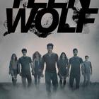 teenwolfer