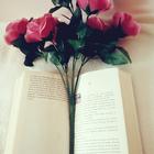 books_coffe_tea