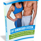 Fat Diminisher System Review