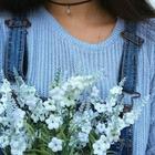 lili hasna
