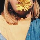 Missing Daisy Petal