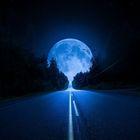 Akame Nightlight