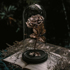 Rose_metall_girl