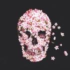 FloraLN